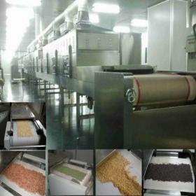 五谷杂粮微波干燥设备