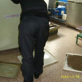 微波水蜜丸干燥杀菌设备
